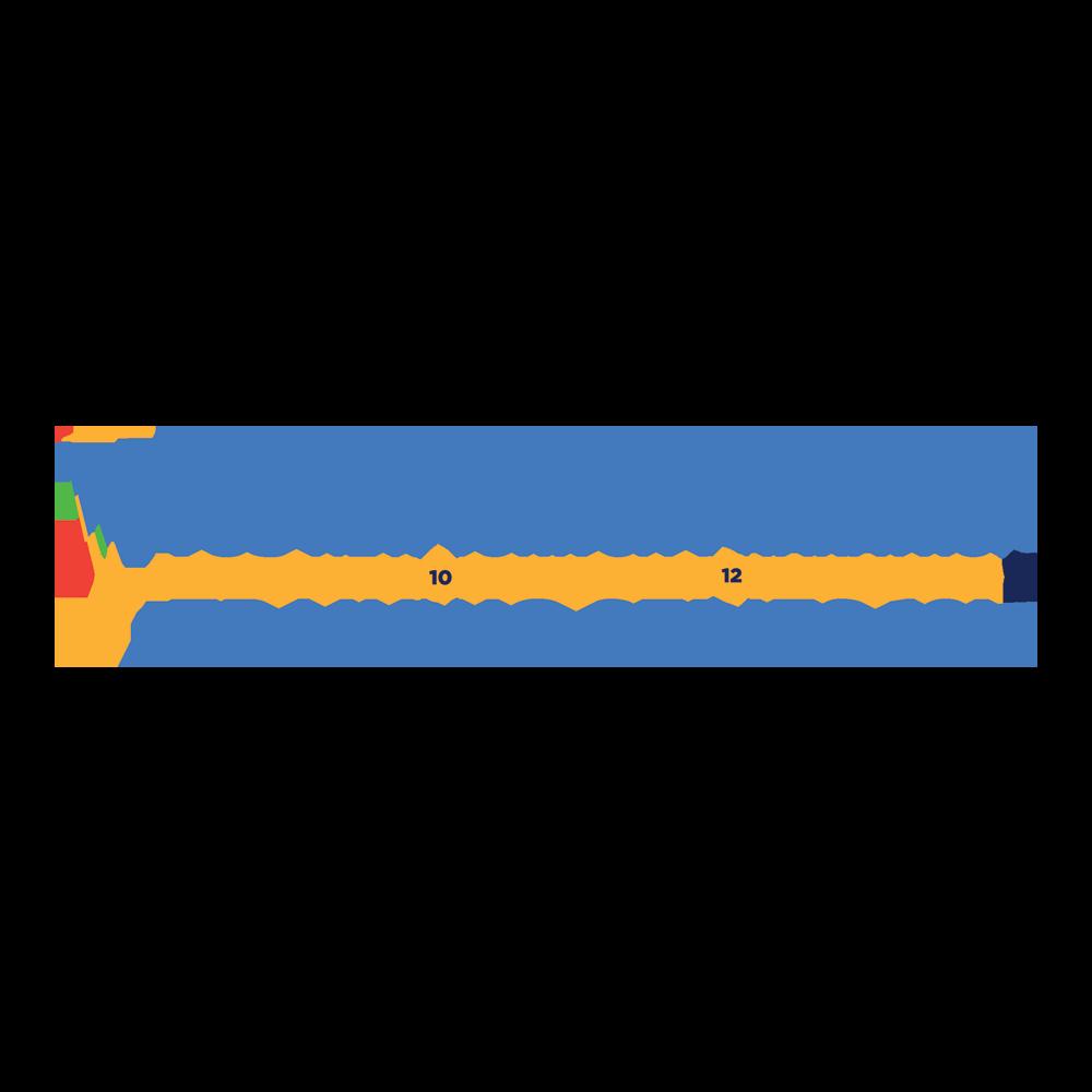 TCS New York City Marathon Training Series 12M logo