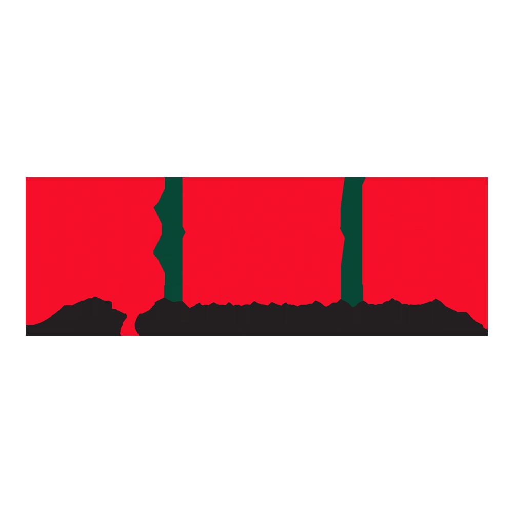 UAE Healthy Kidney 10K logo